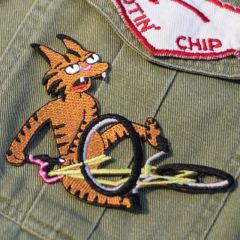 *TEAM DREAM BICYCLING TEAM* bartmac patch (cat tabletop)